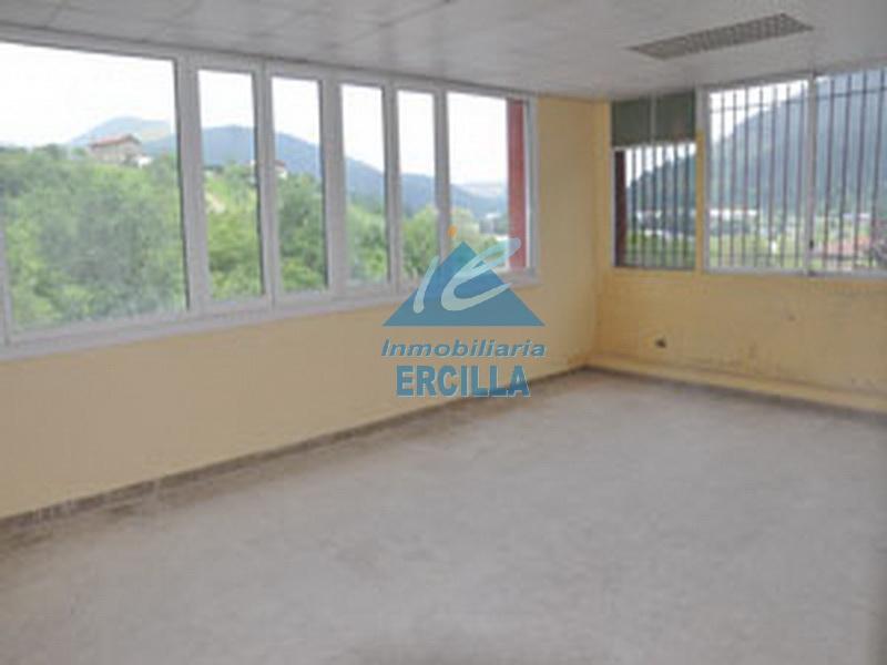Pabell n con oficinas arrigorriaga pabellones en for Pisos alquiler arrigorriaga