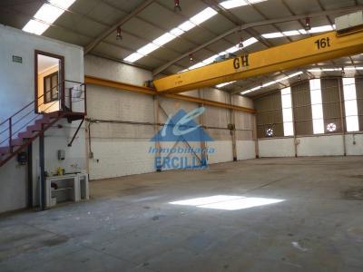 Nave industrial con grua en Duranguesado - Bedia