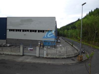 Nave industrial en alquiler con grúa puente en Valle de Arratia - Artea